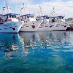 Αλιευτικά
